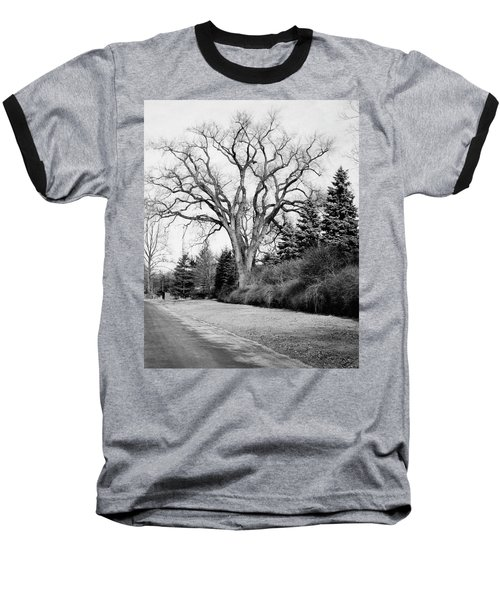 An Elm Tree At The Side Of A Road Baseball T-Shirt
