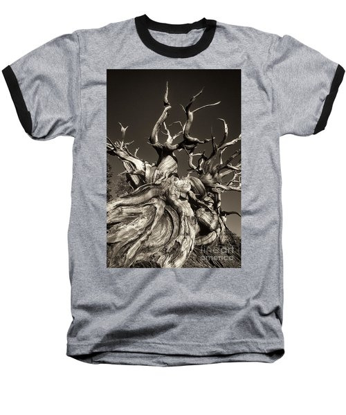 Baseball T-Shirt featuring the photograph Ancient Bristlecone Pine In Black And White by Dave Welling
