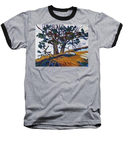 Ancient Red Cedars Baseball T-Shirt