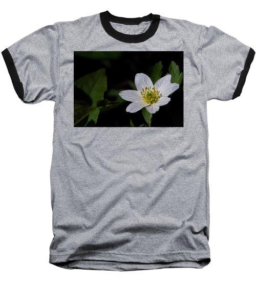 Anemone Nemorosa  By Leif Sohlman Baseball T-Shirt