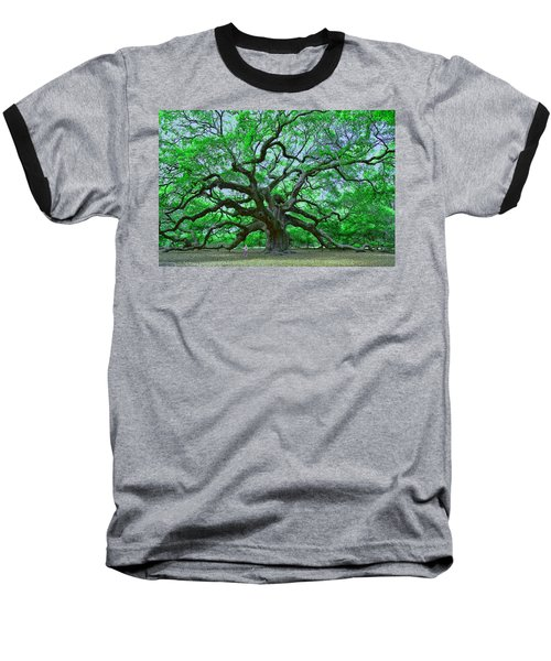 Angel Oak Baseball T-Shirt by Allen Beatty