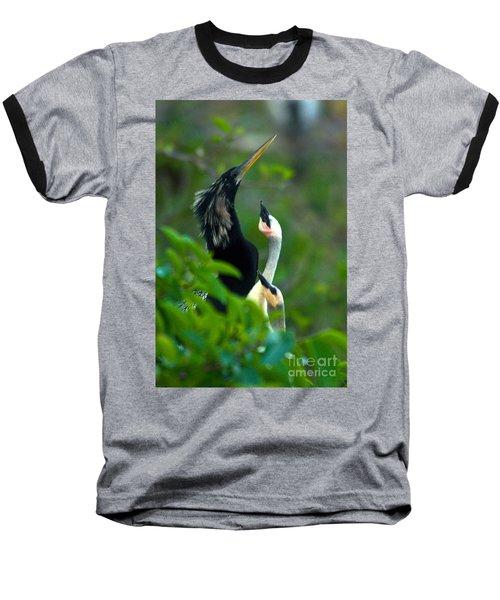 Anhinga Adult With Chicks Baseball T-Shirt by Mark Newman