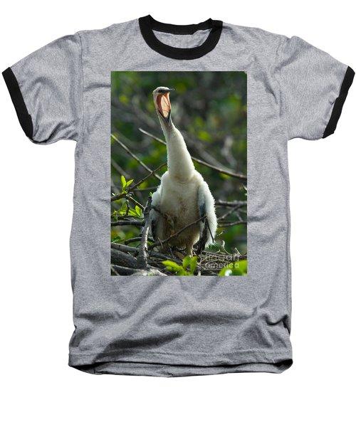 Anhinga Chick Baseball T-Shirt by Mark Newman