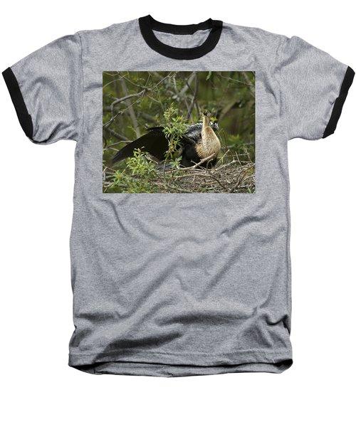 Anhinga Mama Baseball T-Shirt by Phill Doherty