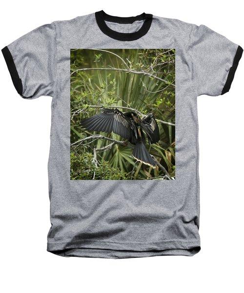 Anhinga Papa Baseball T-Shirt by Phill Doherty