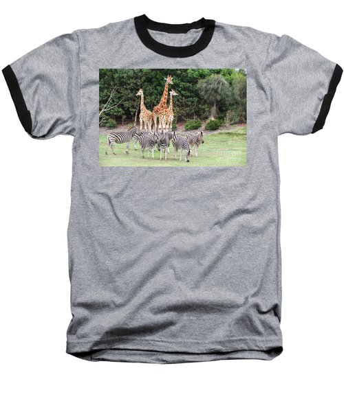 Animal Kingdom I Baseball T-Shirt
