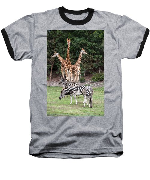 Animal Kingdom II Baseball T-Shirt