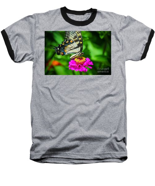 Anise  Swallowtail Butterfly Baseball T-Shirt