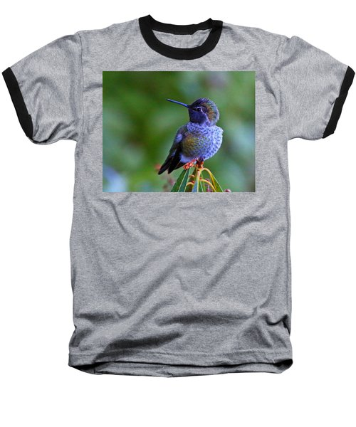 Annas Hummingbird Baseball T-Shirt