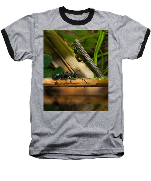 Ants Adventure 2 Baseball T-Shirt