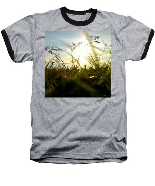 Ant's Eye View Baseball T-Shirt by Thomasina Durkay