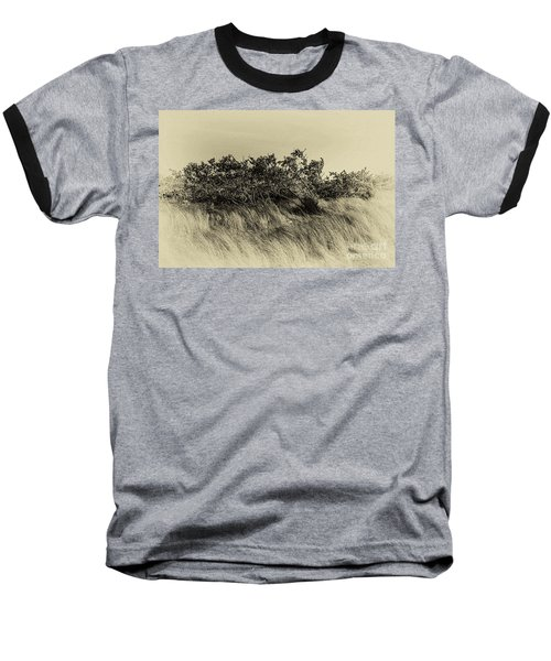 Apollo Beach Grass Baseball T-Shirt