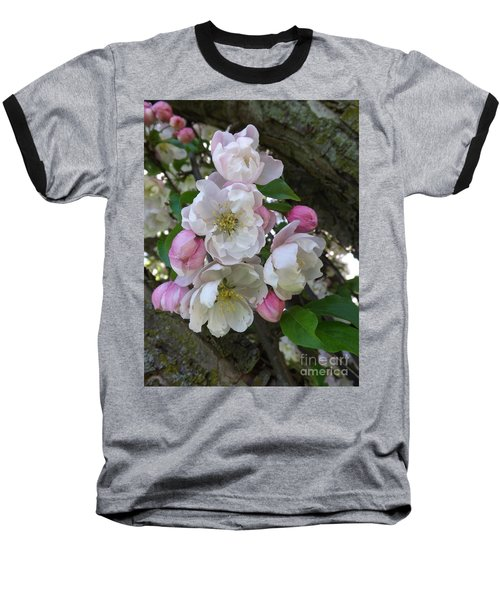 Apple Blossom Bouquet Baseball T-Shirt by Sara  Raber
