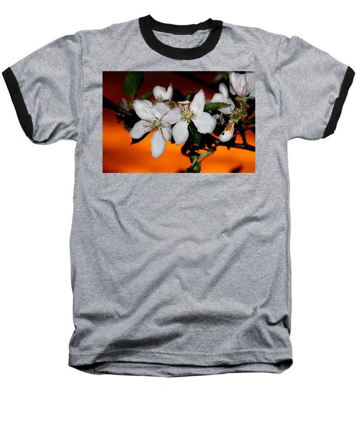 Apple Blossom Sunrise I Baseball T-Shirt