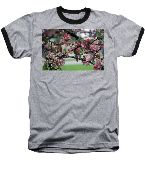 Baseball T-Shirt featuring the photograph Apple Blossom Time by Kay Novy