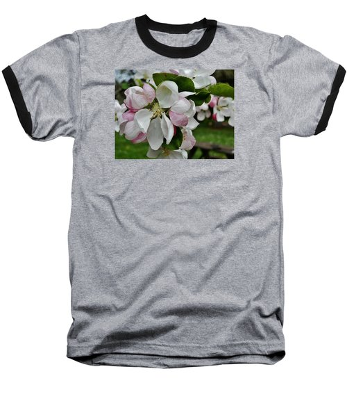 Apple Blossoms 2 Baseball T-Shirt