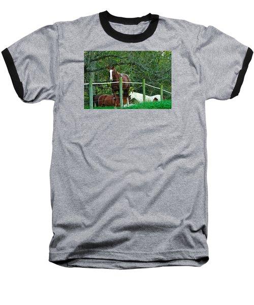 Apple Dreams Baseball T-Shirt