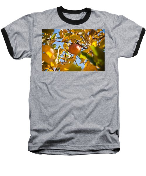 Apple Picking Baseball T-Shirt