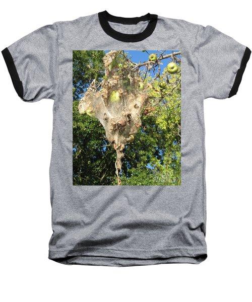 Apple Trap Baseball T-Shirt by Carol Lynn Coronios