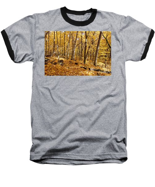 Arboretum Trail Baseball T-Shirt by Steven Ralser