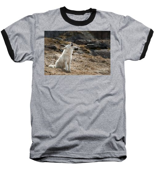 Baseball T-Shirt featuring the photograph Arctic Wolf Howling by Wolves Only