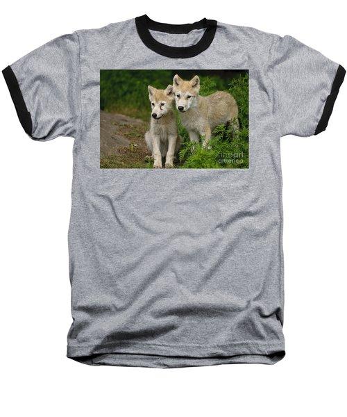 Arctic Wolf Puppies Baseball T-Shirt