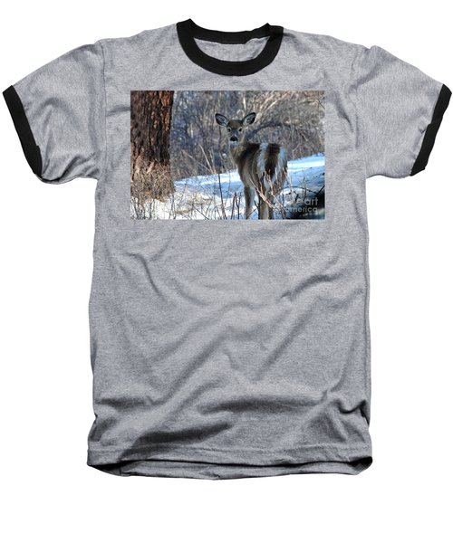 Baseball T-Shirt featuring the photograph Are You Looking At Me by Sam Rosen