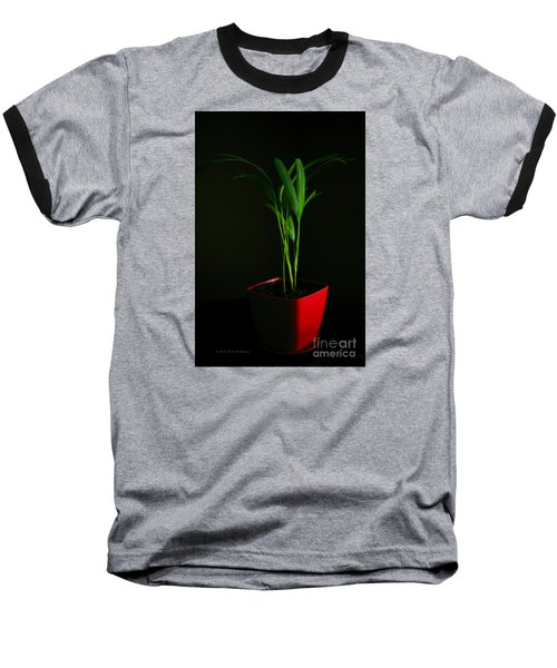 Areca Palm Baseball T-Shirt