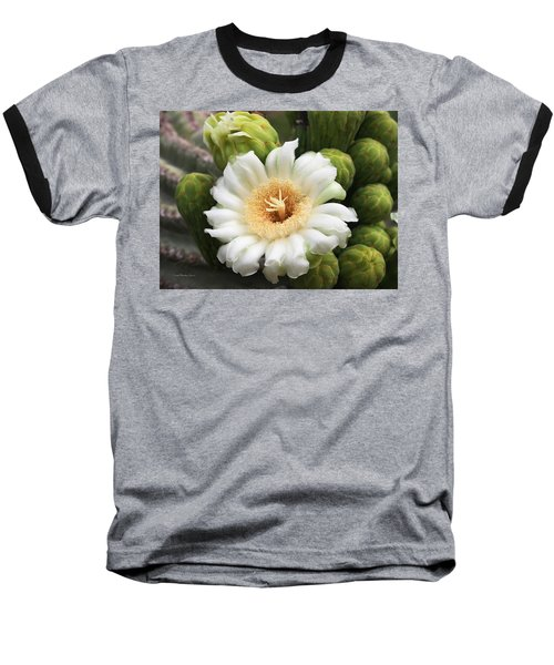 Arizona State Flower The Saguaro Blossom Baseball T-Shirt