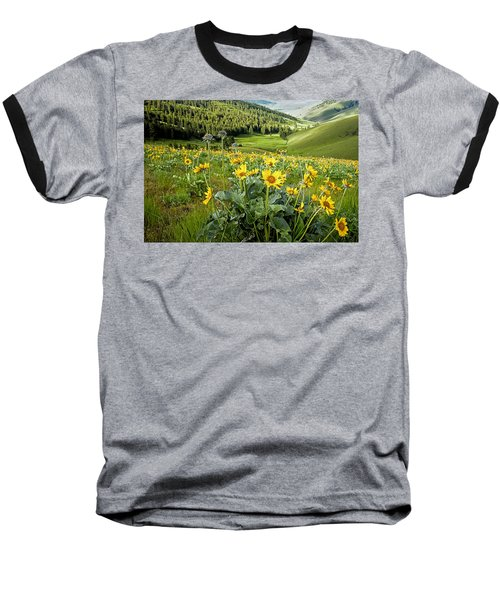 Baseball T-Shirt featuring the photograph Arrow Leaf Balsam Root by Jack Bell