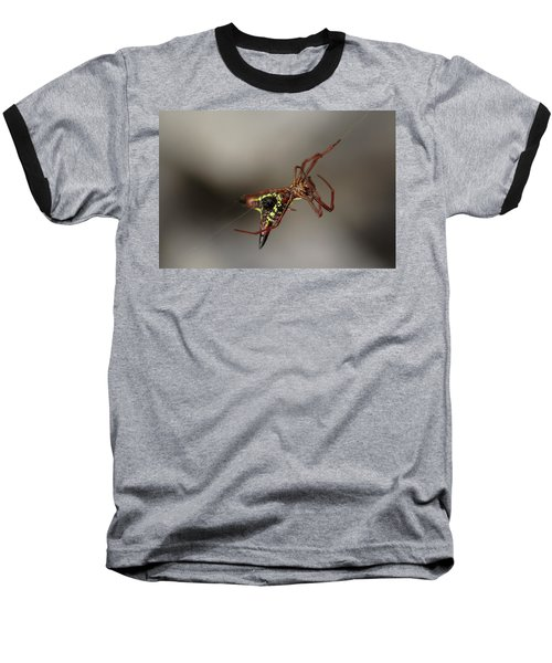 Arrow-shaped Micrathena Spider Starting A Web Baseball T-Shirt