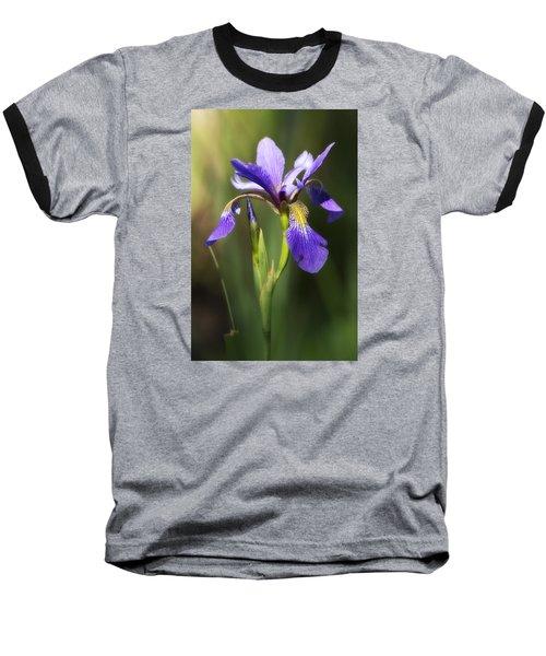Artsy Iris Baseball T-Shirt by Shelly Gunderson
