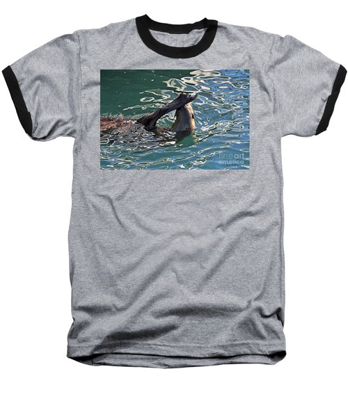 Artsy Sea Lion Baseball T-Shirt by Susan Wiedmann