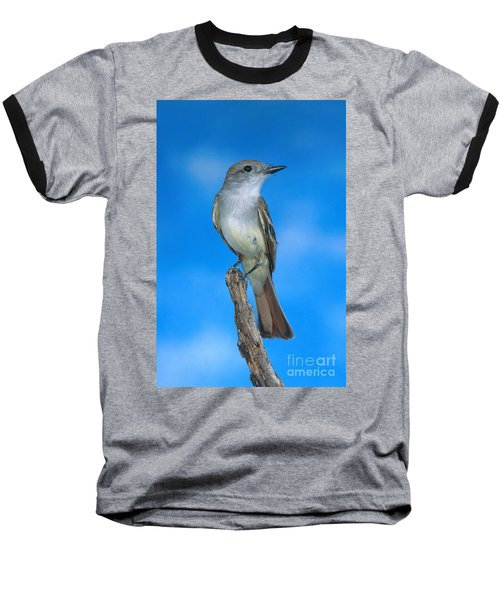 Ash-throated Flycatcher Baseball T-Shirt by Anthony Mercieca