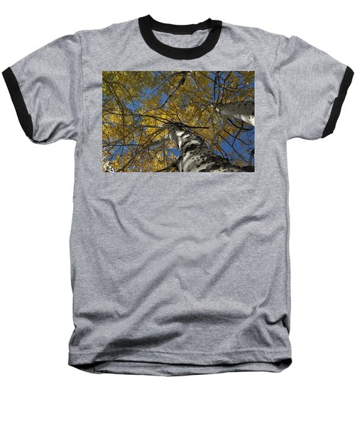 Fall Aspen Baseball T-Shirt
