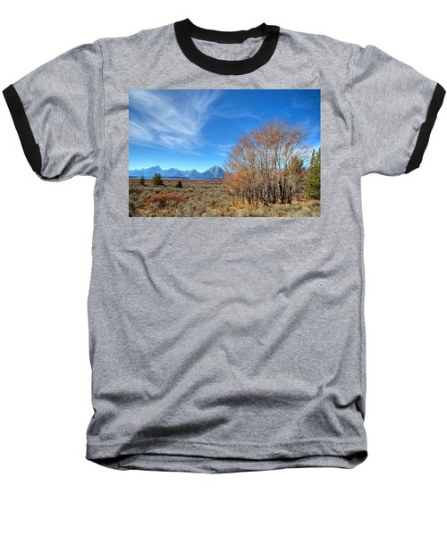 Baseball T-Shirt featuring the photograph Aspen Last Stand  by David Andersen