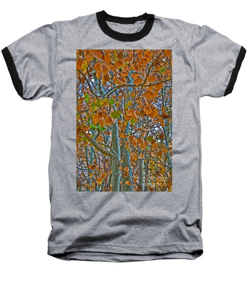 Baseball T-Shirt featuring the photograph Aspen Leaves In The Fall by Mae Wertz