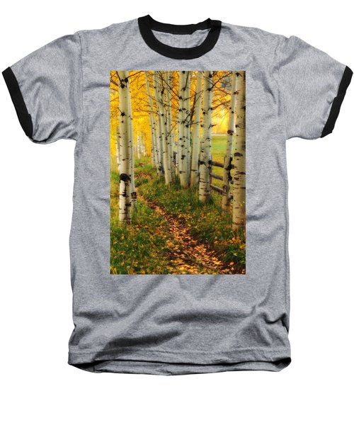 Aspen Path Baseball T-Shirt by Ronda Kimbrow