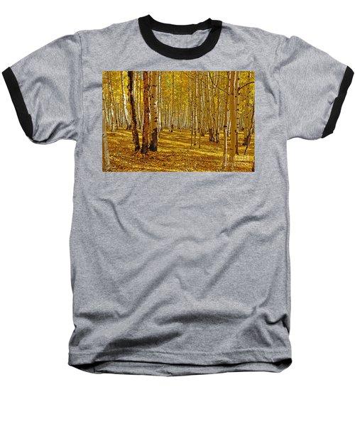 Aspen Sanctuary Baseball T-Shirt