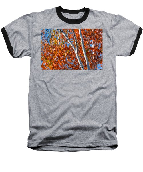 Baseball T-Shirt featuring the photograph Aspen by Sebastian Musial