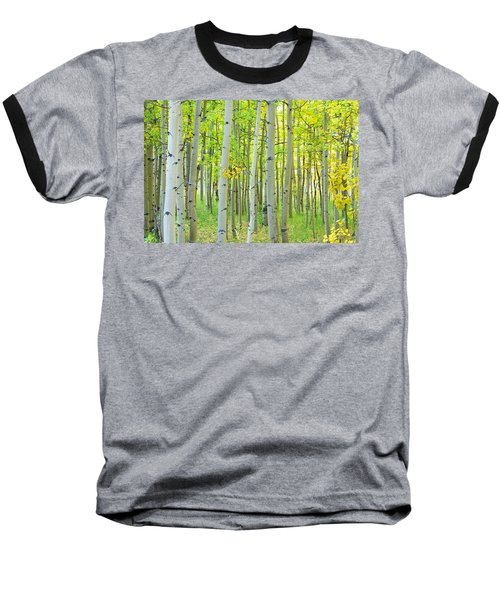 Aspen Tree Forest Autumn Time  Baseball T-Shirt