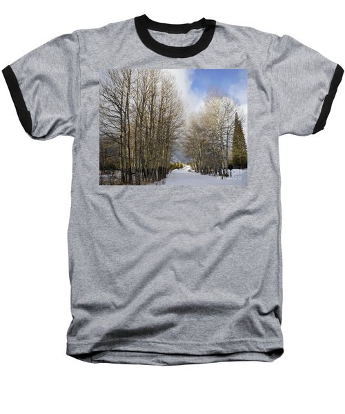 Aspen Trees Along Snowy Colorado Path Baseball T-Shirt