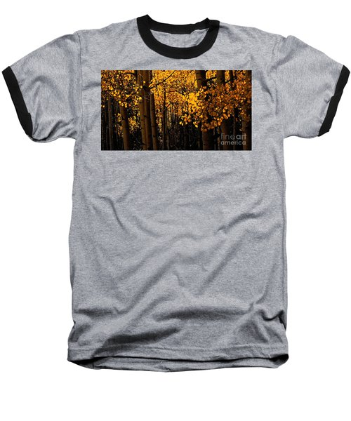 Aspen Woods Baseball T-Shirt