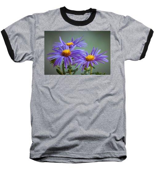 Aster Baseball T-Shirt