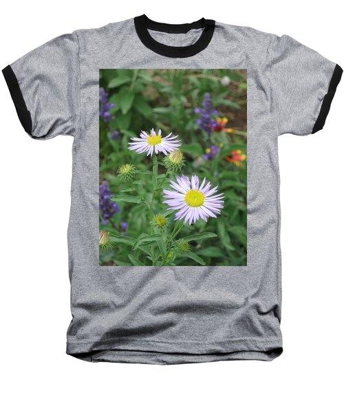 Asters In Close-up Baseball T-Shirt