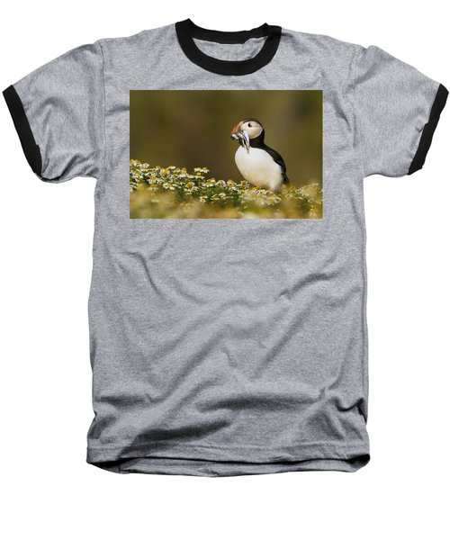 Atlantic Puffin Carrying Fish Skomer Baseball T-Shirt by Sebastian Kennerknecht