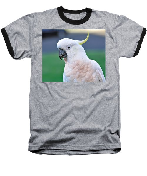 Australian Birds - Cockatoo Baseball T-Shirt by Kaye Menner