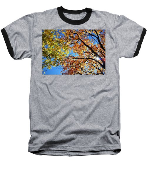 Autumn Afternoon Baseball T-Shirt