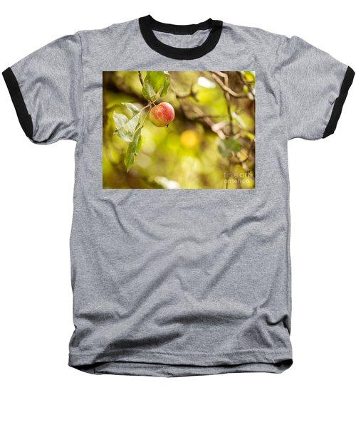 Autumn Apple Baseball T-Shirt by Matt Malloy