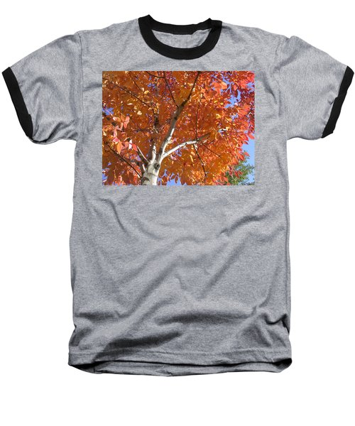 Autumn Aspen Baseball T-Shirt